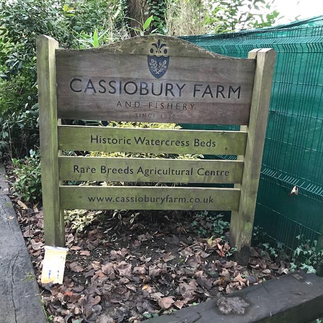 Day 42 Cassiobury Farm Park